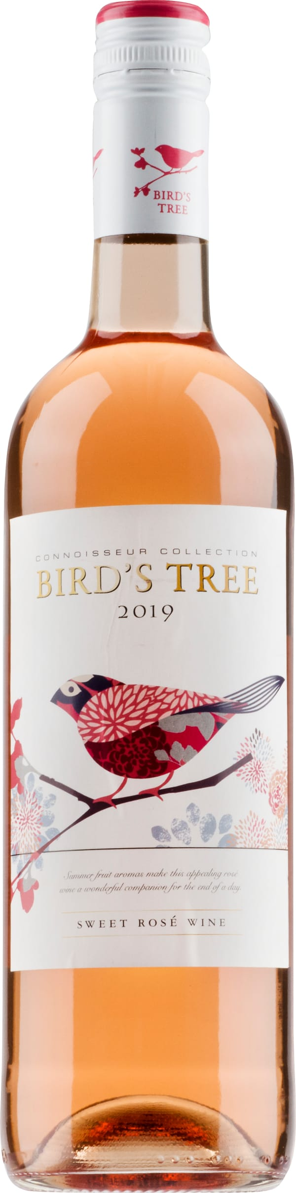 Bird's Tree Rose  2019
