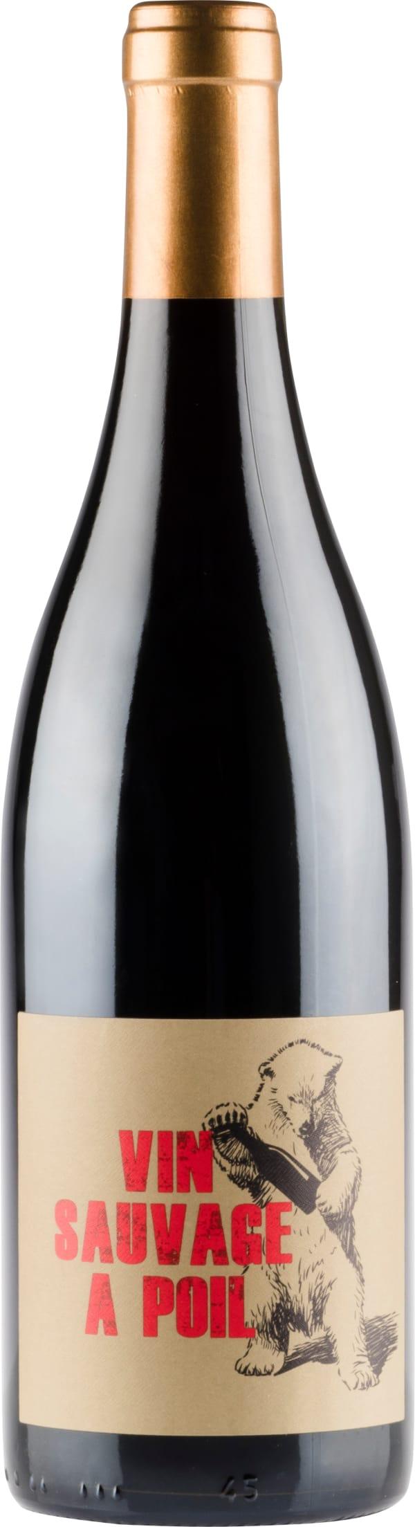 Vin Sauvage a Poil Regnie 2017