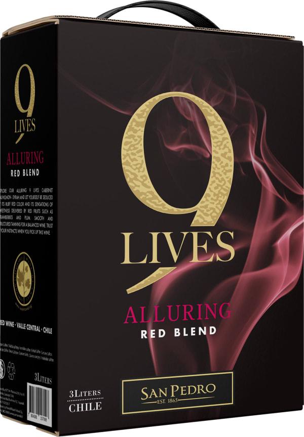 Gato Negro Red Blend 2019 lådvin