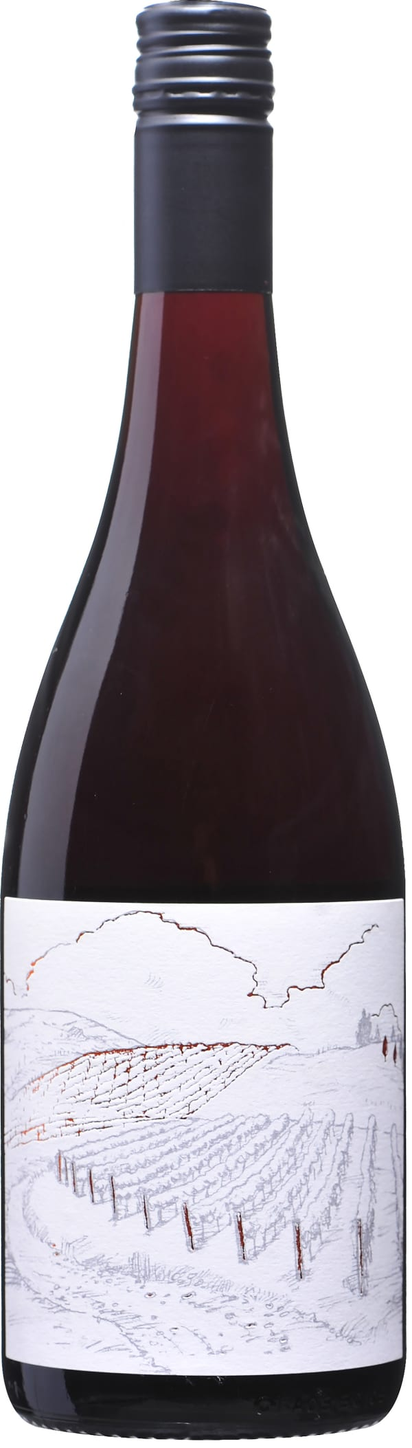 Greystone Vineyard Ferment Pinot Noir 2018
