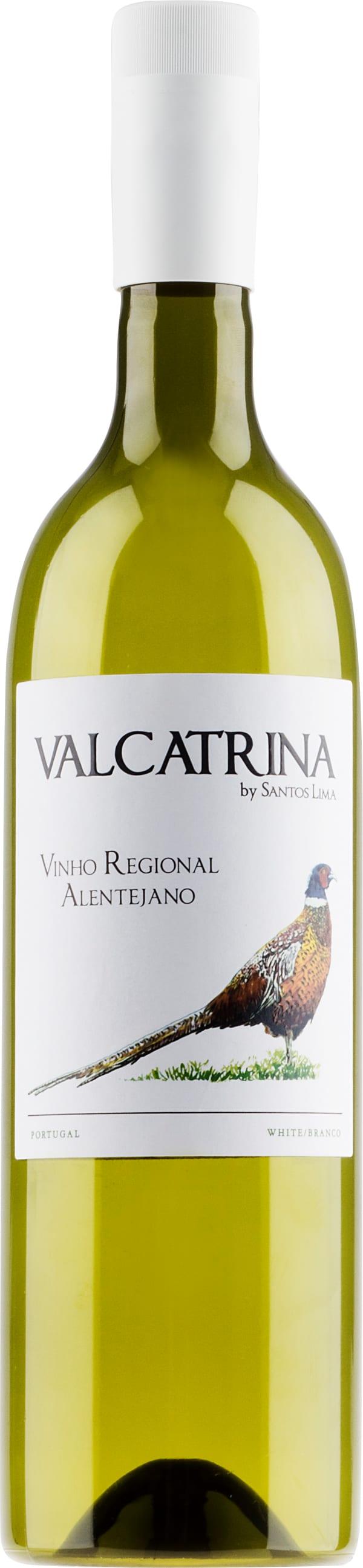Valcatrina Branco 2019 plastic bottle