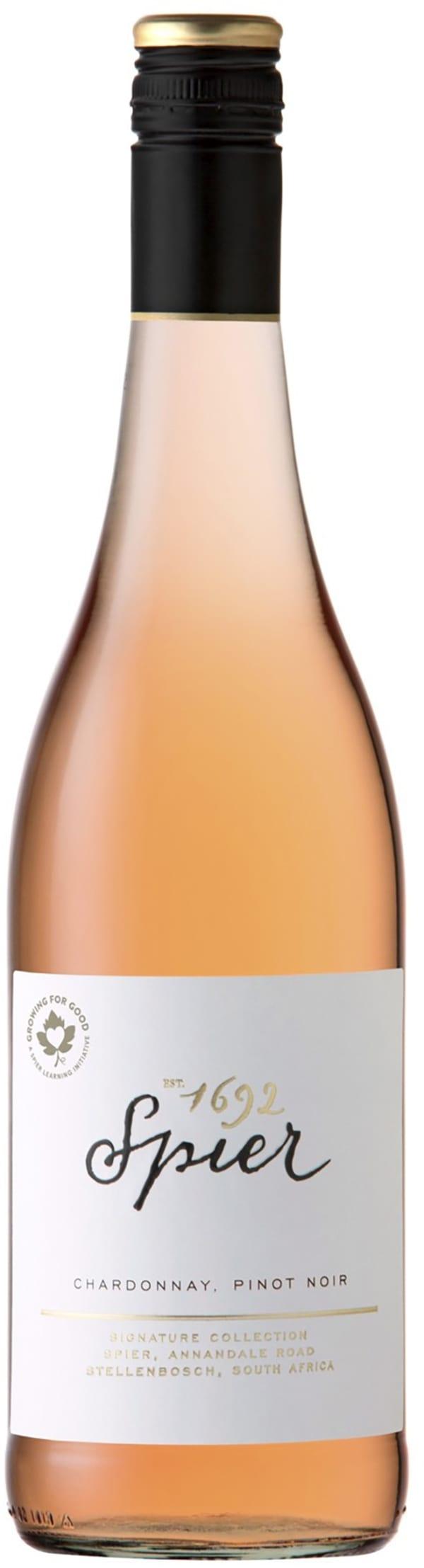 Spier Signature Chardonnay Pinot Noir Rosé 2019
