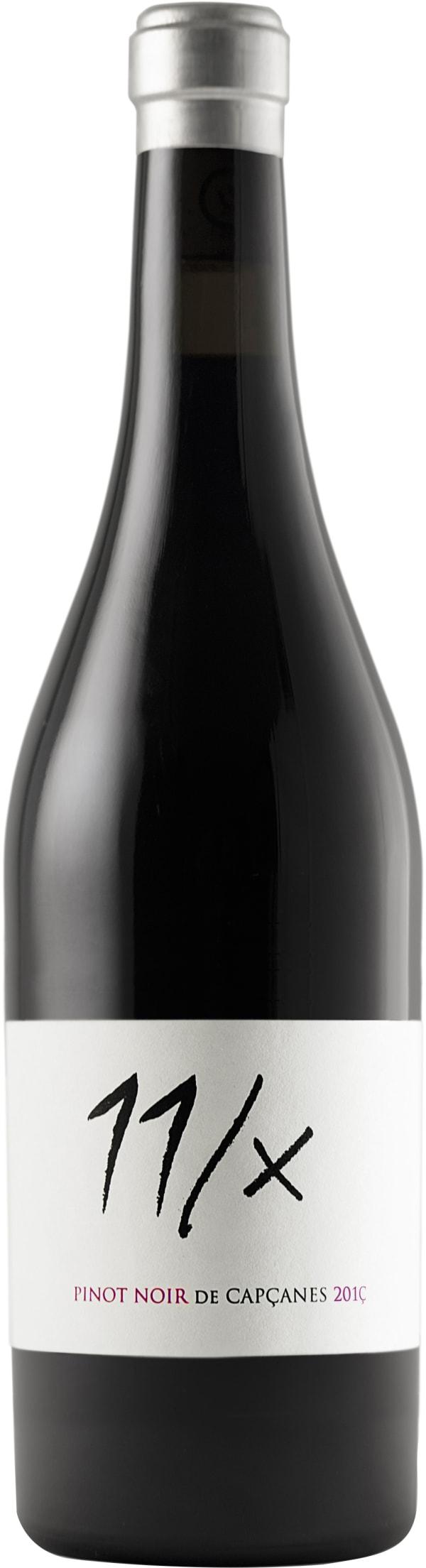 Pinot Noir 11/X 2016