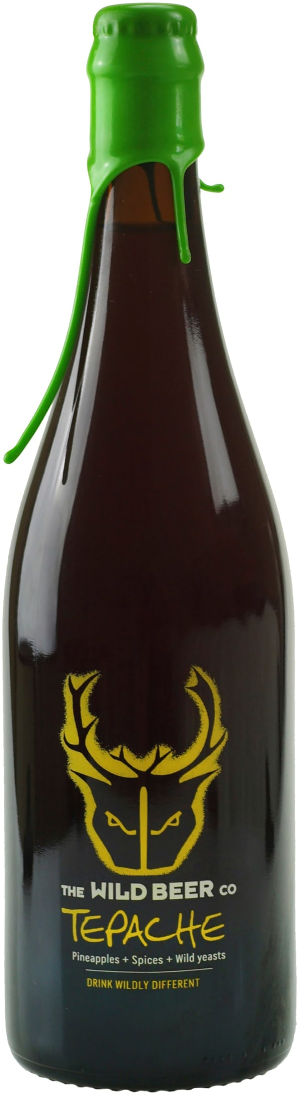 Wild Beer Tepache Sour Ale