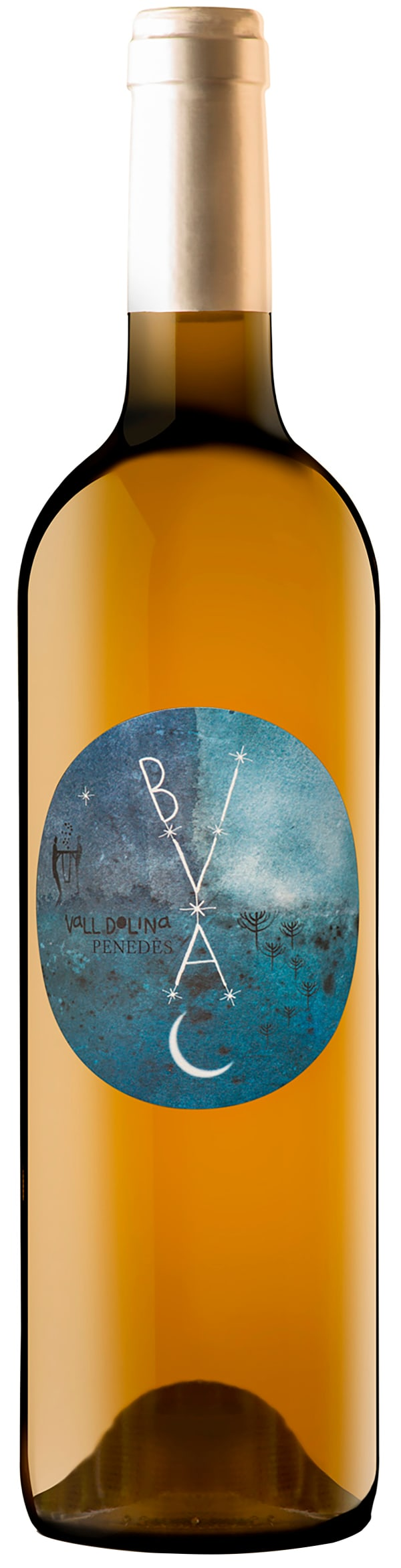 Vall Dolina Bivac 2019