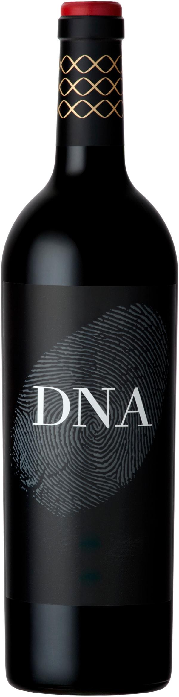 Vergelegen DNA 2013