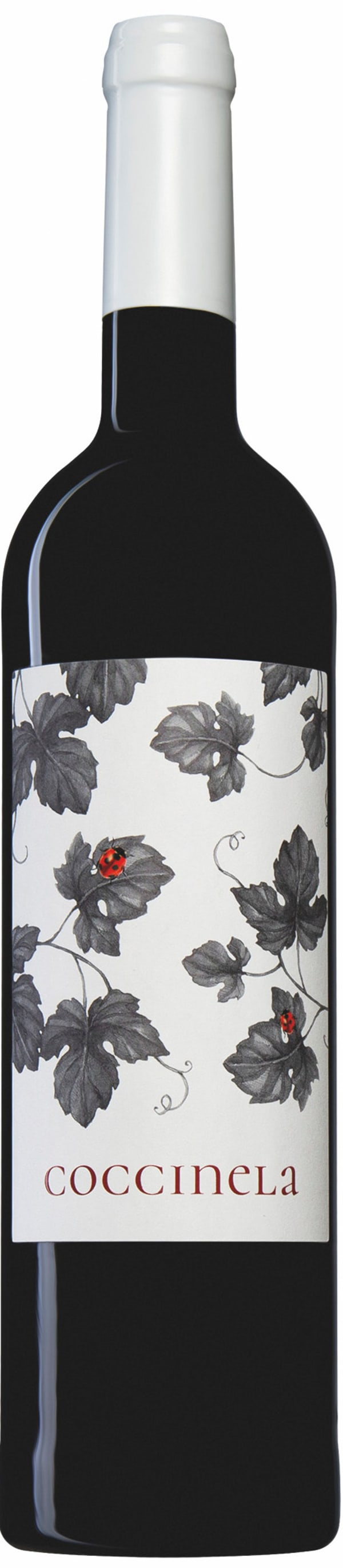 Coccinela Red 2018