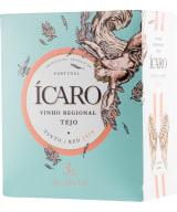 Ícaro Tinto 2019 lådvin