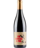 Vin Sauvage a Poil Regnie 2019
