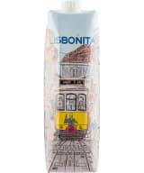 Lisbonita 2019 carton package