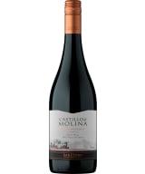 Castillo de Molina Pinot Noir Reserva 2018