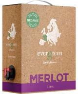 Evergreen Organic Merlot 2018 lådvin