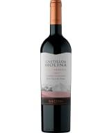 Castillo de Molina Reserva Cabernet Sauvignon 2019