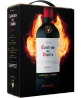 Casillero del Diablo Malbec 2020 bag-in-box