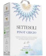 Settesoli Pinot Grigio Organic 2020 lådvin