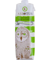 Asio Otus Pinot Grigio Organic kartongförpackning