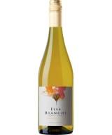Elsa Bianchi Chardonnay 2019