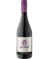 Aliwen Pinot Noir Reserva 2018