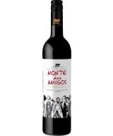 Monte dos Amigos 2020
