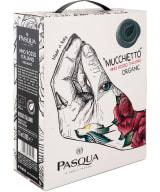 Pasqua Mucchietto Vino Rosso Italiano Organic bag-in-box