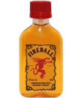 Fireball plastic bottle