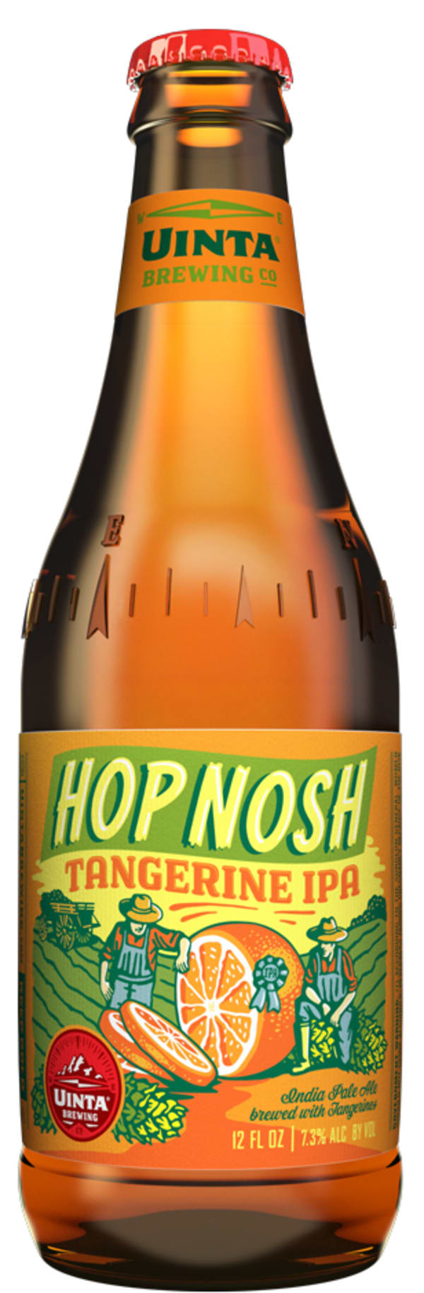 Hop Nosh Tangerine IPA
