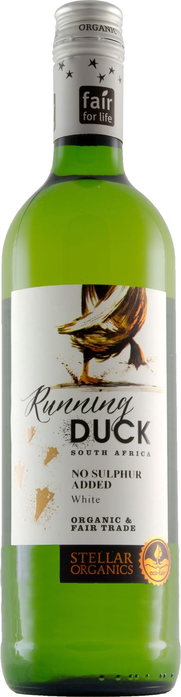Running Duck White 2017
